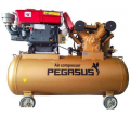 Máy nén khí PEGASUS chạy bằng dầu Diesel TM-W-1.6/8 -500L