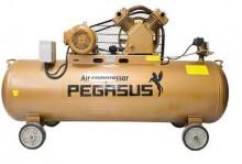 Máy nén khí PEGASUS TM-V-0.25/8-120L