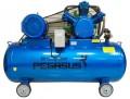 Máy nén khí PEGASUS TM-V-0.36/8-330L