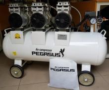 Máy nén khí giảm âm PEGASUS TM-OF750-100L