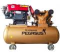 Máy nén khí PEGASUS chạy bằng dầu Diesel TM-W-1.6/12.5 -500L
