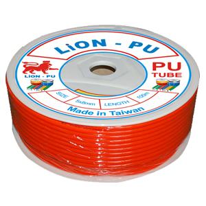 d-y-h-i-lion-1.jpg