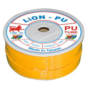 d-y-h-i-lion-2.jpg