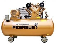 pegasus-1-05550-std.jpg