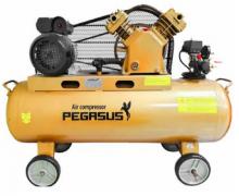 Máy nén khí PEGASUS TM-V-0.25/8-180L (3HP)