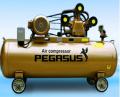 Máy nén khí PEGASUS TM-W-0.67/8-500L (7,5HP)